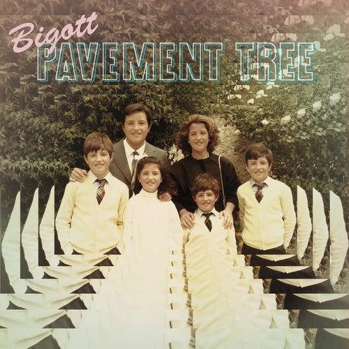 Pavement Tree de Bigott