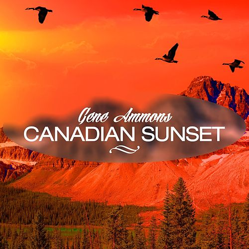 Canadian Sunset by Gene Ammons