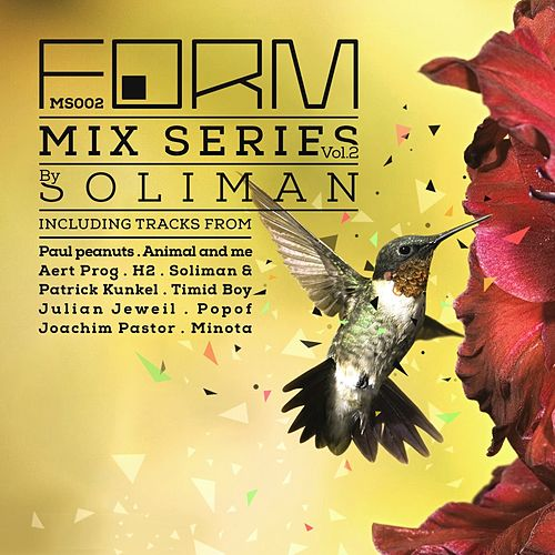 Form Mix Series, Vol. 2 (Mixed by Soliman) by Various Artists