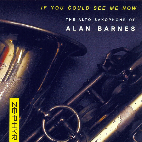 If You Could See Me Now von Alan Barnes