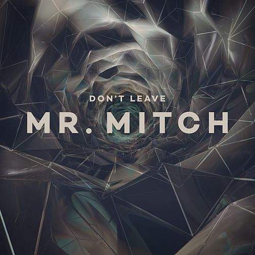 Don't Leave EP by Mr. Mitch