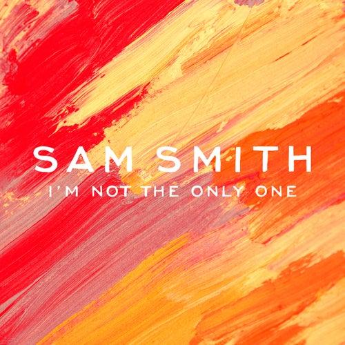 I'm Not The Only One von Sam Smith