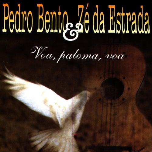 Voa, Paloma, Voa von Pedro Bento e Ze da Estrada