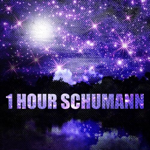 1 Hour Schumann von Various Artists