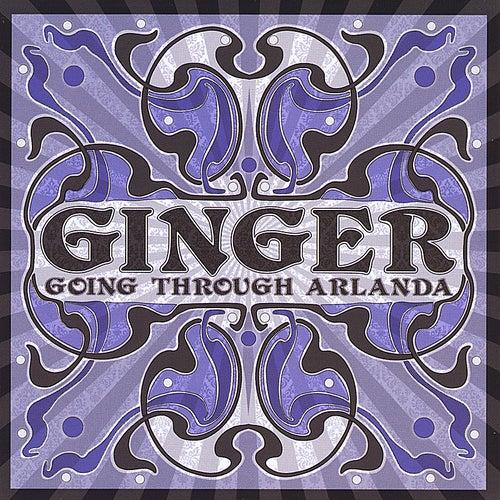 Going Through Arlanda by Ginger