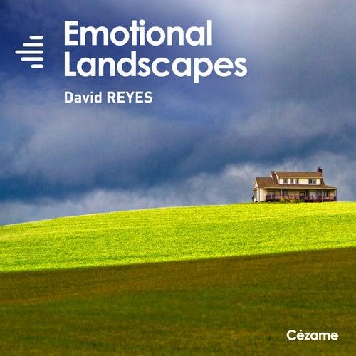 Emotional Landscapes by David Reyes