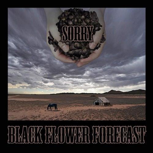 Black Flower Forecast von Sorry