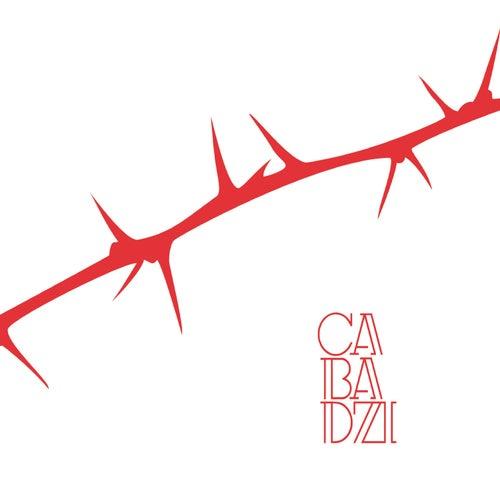 Des angles et des épines de Cabadzi