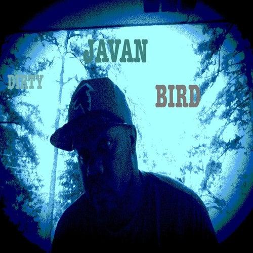 Dirty Bird de Javan