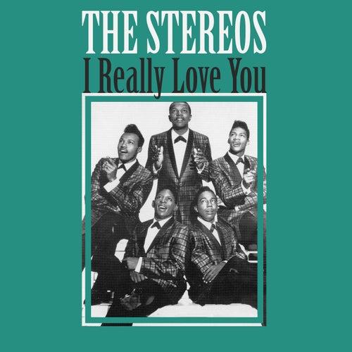 I Really Love You de The Stereos