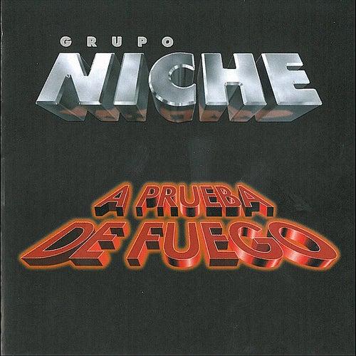 A Prueba de Fuego von Grupo Niche