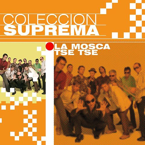 Colección Suprema de La Mosca Tse Tse