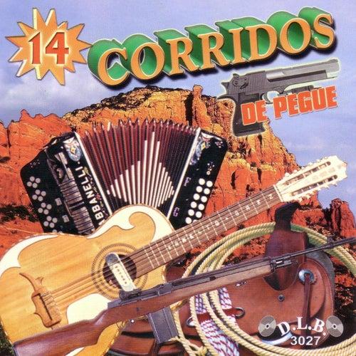 14 Corridos de Pegue de Various Artists