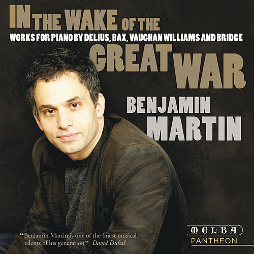 In the Wake of the Great War von Benjamin Martin