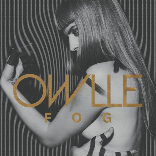 Fog - EP by Owlle