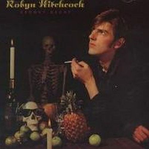 Groovy Decay by Robyn Hitchcock