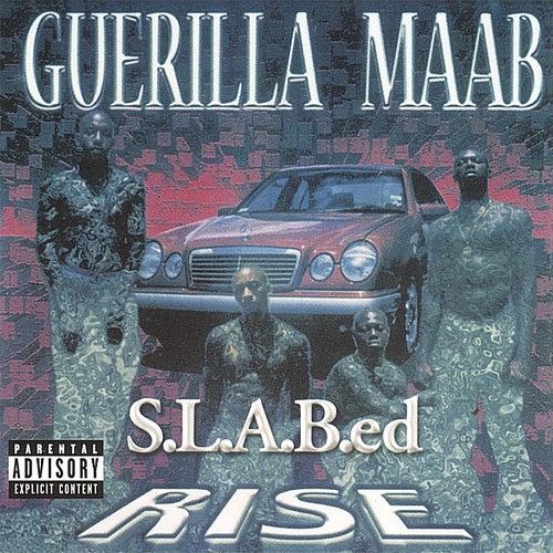 Rise: S.L.A.B.ed by Guerilla Maab