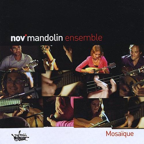 Mosaique de Nov Mandolin Ensemble