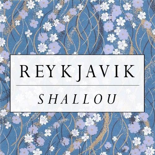 Reykjavik von Shallou