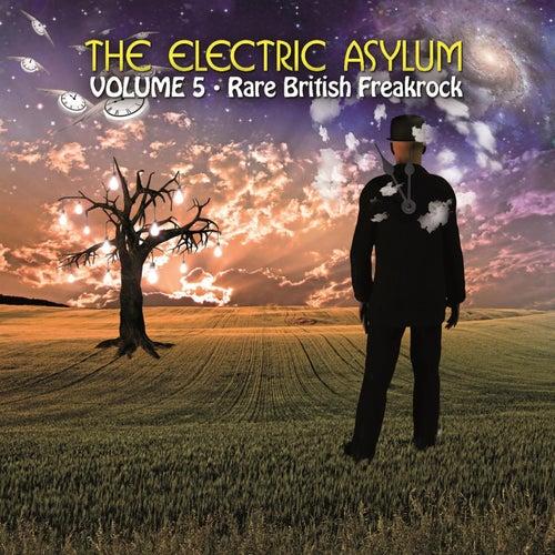 The Electric Asylum, Volume 5: Rare British Freakrock de Various Artists