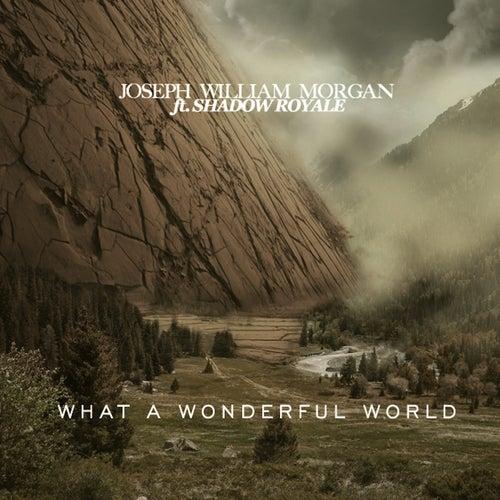 What a Wonderful Word (feat. Shadow Royale) di Joseph William Morgan