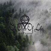 The Elixir of Life by Peter Gundry