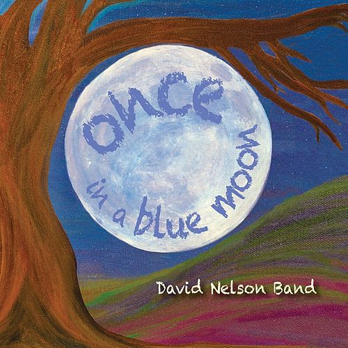 Once in a Blue Moon by David Nelson Band