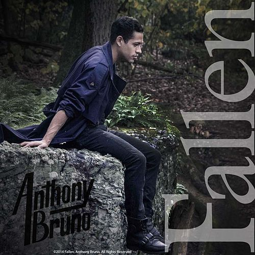 Fallen von Anthony Bruno