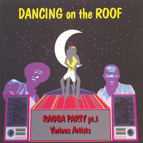 Dancing On The Roof (ragga Party Pt.1) by Various Artists