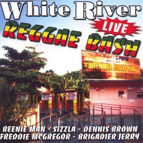 White river reggae bash (live) von Various Artists