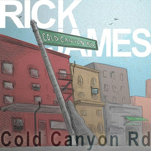 Cold Canyon Road by Rick James