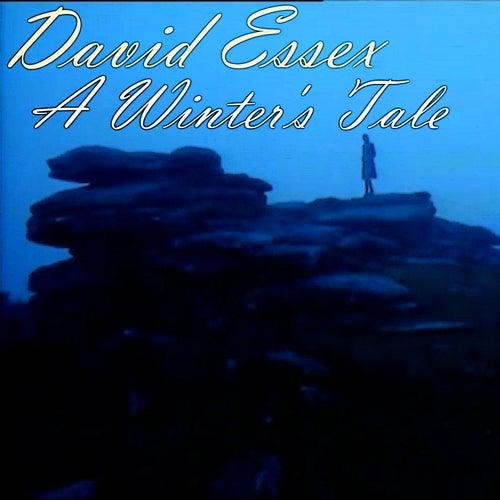 A Winter's Tale de David Essex