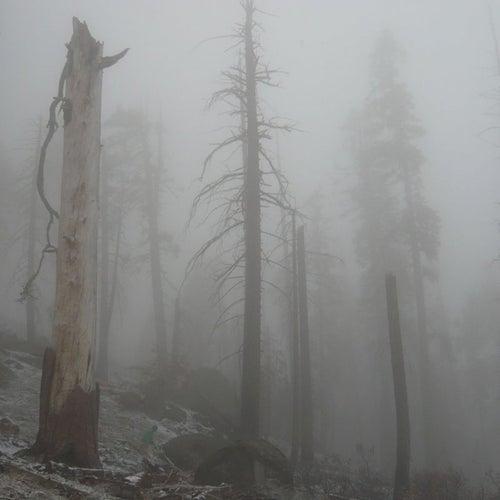 Mount Eerie pts. 6 & 7 de Mount Eerie
