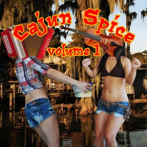 Cajun Spice, Vol. 1 de Various Artists