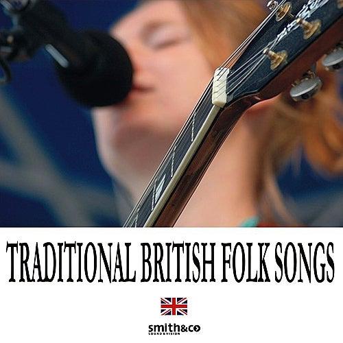 Traditional Folk de Various Artists