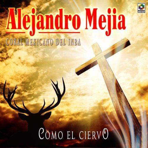 Como el Ciervo de Alejandro Mejia