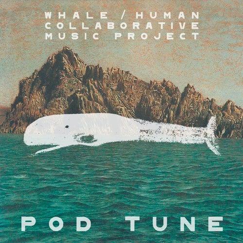 Pod Tune von Various Artists