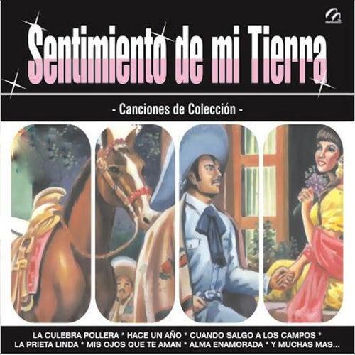 Sentimiento de Mi Tierra de Various Artists