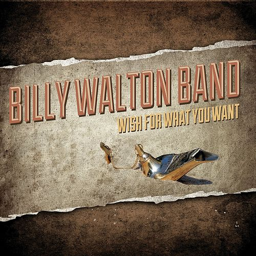 Wish For What You Want von Billy Walton Band