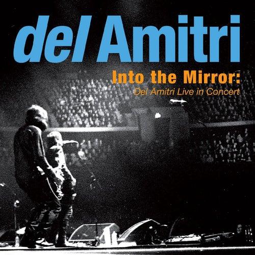Into the Mirror: Del Amitri Live in Concert de Del Amitri