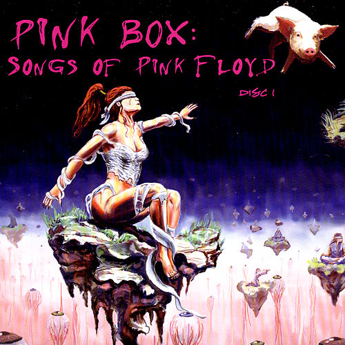 Pink Box: Songs Of Pink Floyd de Various Artists