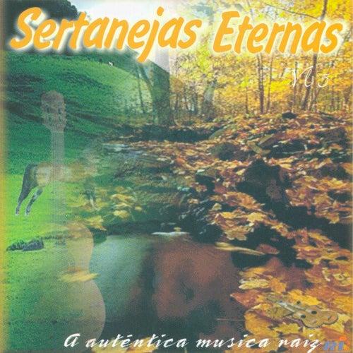 A Autêntica Musica Raiz von Various Artists