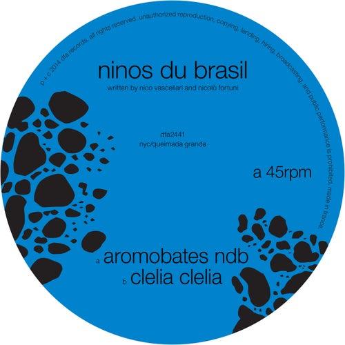 Aromobates NDB by Ninos Du Brasil