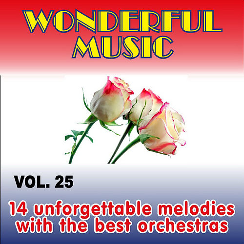 Wonderful Music Vol. 25, 14 Unforgettable Melodies With The Best Orchestras von Various Artists