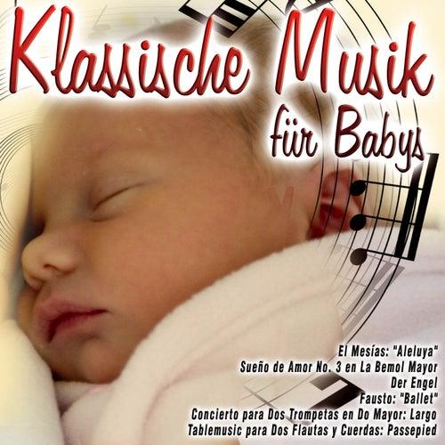 Klassische Musik für Babys de Various Artists