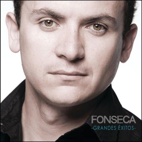 Grandes Exitos de Fonseca