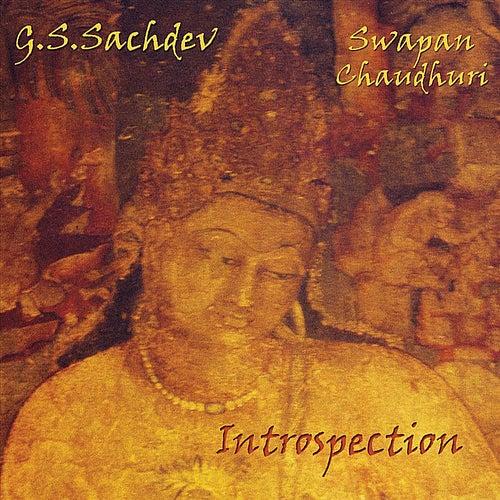 Introspection by G.S. Sachdev