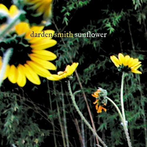 Sunflower von Darden Smith