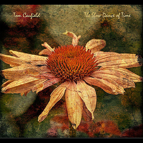 The Slow Dance of Time von Tom Caufield