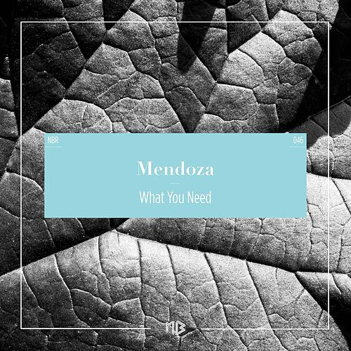 What You Need by Mendoza